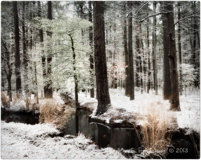 Blackwater, First Snow