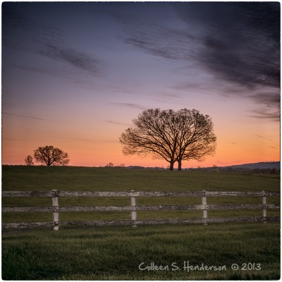 Fence & Trees, VA Countryside
